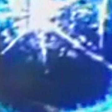 moldyblunt