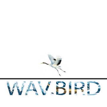 Wav.Bird