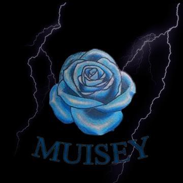 Muisey