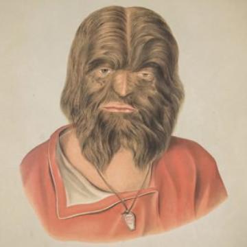 Wookie2x