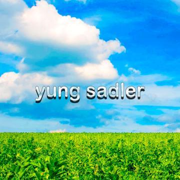 Yung Sadler