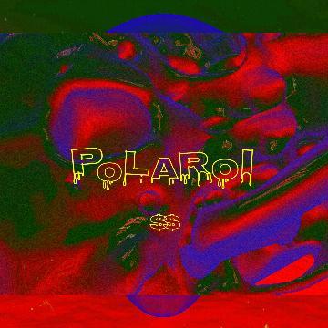 Polaroi