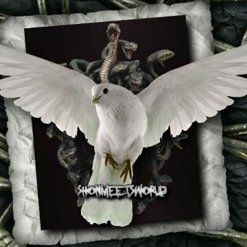 shonmeetsworld