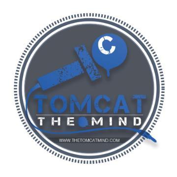 TheTomcatMind