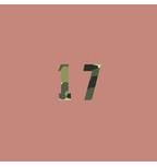 17Beats